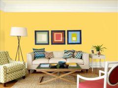 wdsベンジャミンムーア イエロー yellow_rain coat_2020-40