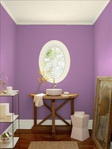 wdsベンジャミンムーア パープル purple hyacinth_2073-40
