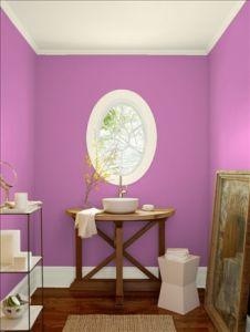 wdsベンジャミンムーア パープル pink raspberry_2075-40